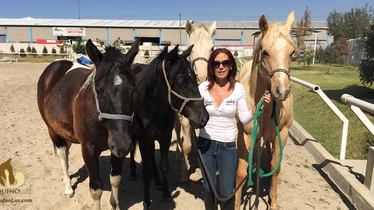 caballos_mujer